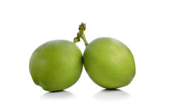 Πράσινη καρύδα Στοκ Φωτογραφία