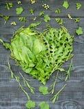 Πράσινη καρδιά βιταμινών ελεύθερη απεικόνιση δικαιώματος