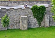 Πράσινη καρδιά στο πάρκο Στοκ φωτογραφία με δικαίωμα ελεύθερης χρήσης