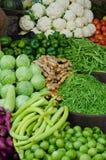 πράσινη κατακόρυφος λαχανικών εμβλημάτων Στοκ Εικόνες