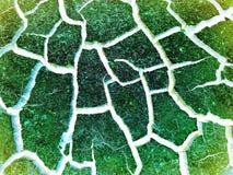 Πράσινη κατανομή των πόρων υποβάθρου στοκ εικόνες με δικαίωμα ελεύθερης χρήσης