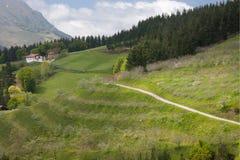 πράσινη κοιλάδα στοκ φωτογραφία με δικαίωμα ελεύθερης χρήσης