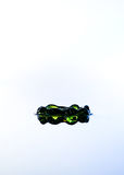 Πράσινη κορώνα νερού. Στοκ Φωτογραφία