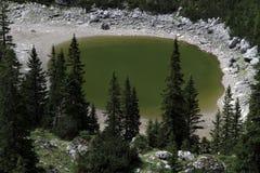 Πράσινη λίμνη στοκ εικόνα