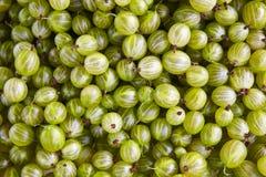 Πράσινη λεπτομέρεια σταφυλιών τρόφιμα ανασκόπησης υγιή Στοκ φωτογραφία με δικαίωμα ελεύθερης χρήσης
