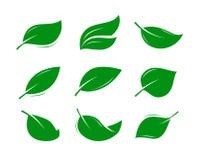 Πράσινη λογότυπο ή ετικέτα φύλλων φυσικό προϊόν, φύση, εικονίδιο eco επίσης corel σύρετε το διάνυσμα απεικόνισης Στοκ Εικόνες