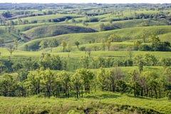 Πράσινη λοφώδης περιοχή στοκ εικόνες με δικαίωμα ελεύθερης χρήσης