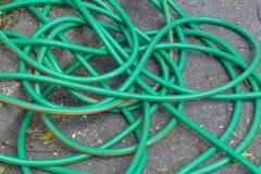πράσινη μάνικα Στοκ Εικόνες