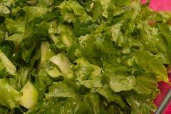 Πράσινη μακροεντολή σαλάτας μαρουλιού και αγγουριών Στοκ Φωτογραφία