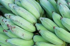 Πράσινη μπανάνα Στοκ Εικόνα