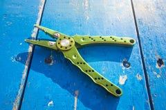 Πράσινη πένσα στον μπλε ξύλινο πίνακα στοκ εικόνες