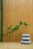 πράσινη πέτρα μπαμπού Στοκ εικόνα με δικαίωμα ελεύθερης χρήσης