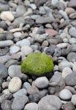 Πράσινη πέτρα ως υπόβαθρο Στοκ φωτογραφίες με δικαίωμα ελεύθερης χρήσης