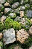 πράσινη πέτρα Στοκ Εικόνες