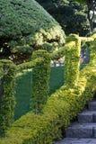 Πράσινη πορεία με τα βήματα και το φως του ήλιου βράχου Στοκ Εικόνες