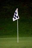 πράσινη πρακτική σημαιών Στοκ Εικόνες