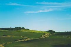 Πράσινη προοπτική λιβαδιού λιβαδιών μπλε ουρανού σύννεφων πρωινού Στοκ φωτογραφίες με δικαίωμα ελεύθερης χρήσης