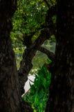 Πράσινη πόλη της Mai Chiang Στοκ φωτογραφίες με δικαίωμα ελεύθερης χρήσης