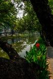 Πράσινη πόλη της Mai Chiang Στοκ εικόνα με δικαίωμα ελεύθερης χρήσης