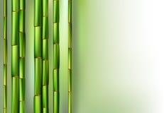 Πράσινη ρεαλιστική διανυσματική απεικόνιση υποβάθρου κορμών μπαμπού στοκ φωτογραφίες