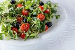 Πράσινη σαλάτα άνοιξη με τις ντομάτες και τις μαύρες ελιές Στοκ Εικόνα