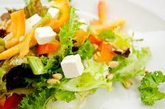 πράσινη σαλάτα φέτας τυριών Στοκ Φωτογραφίες