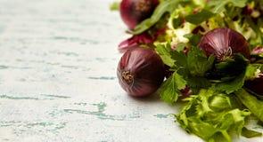 πράσινη σαλάτα και κόκκινο κρεμμύδι στοκ εικόνα