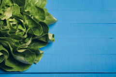πράσινη σαλάτα μαρουλιού Στοκ φωτογραφίες με δικαίωμα ελεύθερης χρήσης