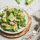 Πράσινη σαλάτα με το ραδίκι, βρασμένο αυγό, arugula, πράσινο μπιζέλι, μέντα Στοκ εικόνα με δικαίωμα ελεύθερης χρήσης