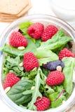 Πράσινη σαλάτα με το arugula και τα μούρα και τα καρύδια πεύκων στο λευκό Στοκ εικόνες με δικαίωμα ελεύθερης χρήσης