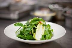 πράσινη σαλάτα πιάτων Στοκ Εικόνες