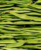 πράσινη σειρά τροφίμων φασολιών ανασκοπήσεων ανασκόπησης Στοκ φωτογραφία με δικαίωμα ελεύθερης χρήσης