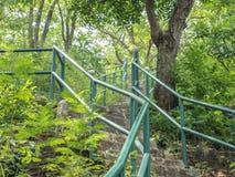 πράσινη σκάλα Στοκ Φωτογραφίες