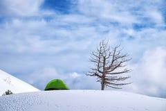 Πράσινη σκηνή ενάντια στο νεφελώδη ουρανό χειμερινό Etna στο πάρκο, Σικελία στοκ φωτογραφίες