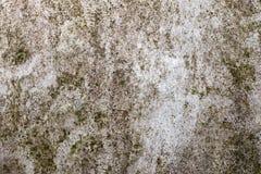Πράσινη σκουριασμένη σύσταση Στοκ Φωτογραφίες