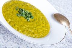 Πράσινη σούπα κολοκύνθης με το μαϊντανό Στοκ εικόνες με δικαίωμα ελεύθερης χρήσης