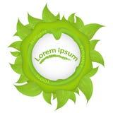 Πράσινη στρογγυλή σφραγίδα με τα φύλλα και τις πτώσεις του νερού Στοκ Φωτογραφίες