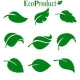 Πράσινη συλλογή φύλλων επίσης corel σύρετε το διάνυσμα απεικόνισης διανυσματική απεικόνιση