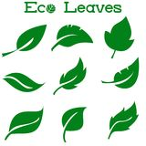 Πράσινη συλλογή φύλλων επίσης corel σύρετε το διάνυσμα απεικόνισης απεικόνιση αποθεμάτων
