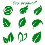 Πράσινη συλλογή φύλλων Σύνολο φύλλου διανυσματική απεικόνιση