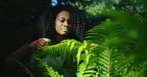 Πράσινη σύνθεση Η θαυμάσια αφροαμερικανίδα γυναίκα με τις πράσινες σκιές κραγιόν και ματιών φροντίζει για τη φτέρη Είναι φιλμ μικρού μήκους