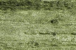 πράσινη σύσταση ξύλινη Στοκ Εικόνα