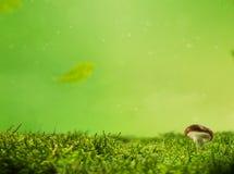 Πράσινη σύσταση υποβάθρου βρύου φύσης με το μανιτάρι στοκ φωτογραφία