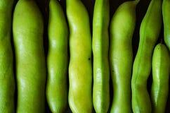 πράσινη σύσταση φασολιών Στοκ Φωτογραφία