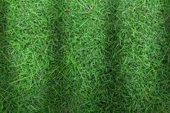 Πράσινη σύσταση χλόης ή πράσινο υπόβαθρο χλόης πράσινη χλόη για το γήπεδο του γκολφ, το γήπεδο ποδοσφαίρου ή το αθλητικό υπόβαθρο Στοκ Εικόνες