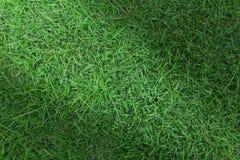Πράσινη σύσταση χλόης ή πράσινο υπόβαθρο χλόης πράσινη χλόη για το γήπεδο του γκολφ, το γήπεδο ποδοσφαίρου ή το αθλητικό υπόβαθρο Στοκ φωτογραφία με δικαίωμα ελεύθερης χρήσης