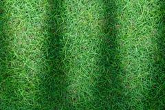 Πράσινη σύσταση χλόης ή πράσινο υπόβαθρο χλόης πράσινη χλόη για το γήπεδο του γκολφ, το γήπεδο ποδοσφαίρου ή το αθλητικό υπόβαθρο Στοκ φωτογραφίες με δικαίωμα ελεύθερης χρήσης