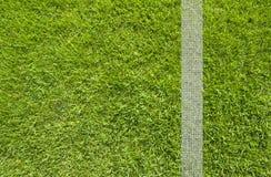 Πράσινη σύσταση χλόης στοκ φωτογραφία