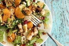 πράσινη υγιής σαλάτα Στοκ Εικόνες