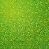 Πράσινη φύση διακοσμήσεων τοίχων Στοκ Εικόνες